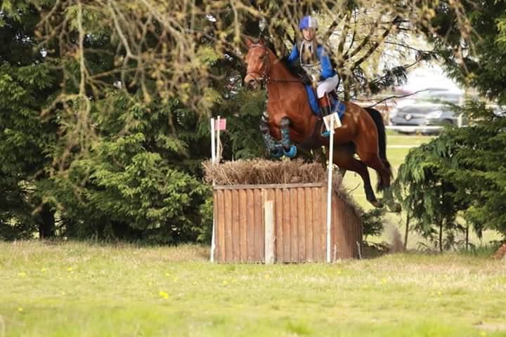 Aventure de Taille 2ème au CCE As poney 2 D à Bonneville Avril 2019
