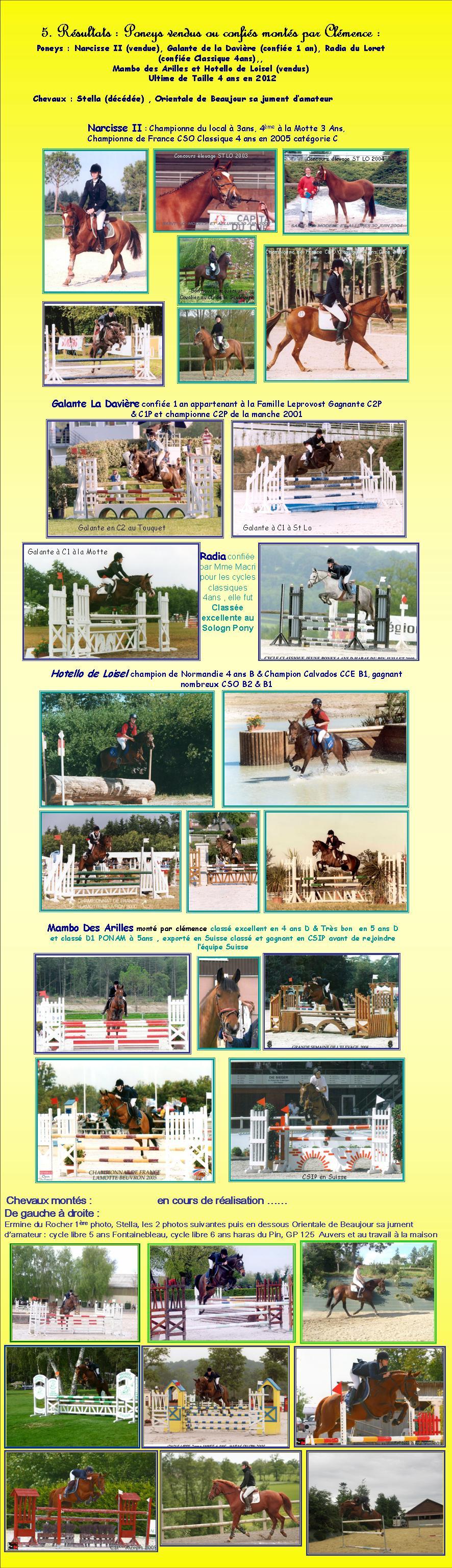 Résultats des cavaliers de l`élévage de taille des poneys & chevaux Narcisse II Galante de la Davière, Radia du Loret, Hotello du loisel, Ermine du rocher, Stella, Orientale de beaujour